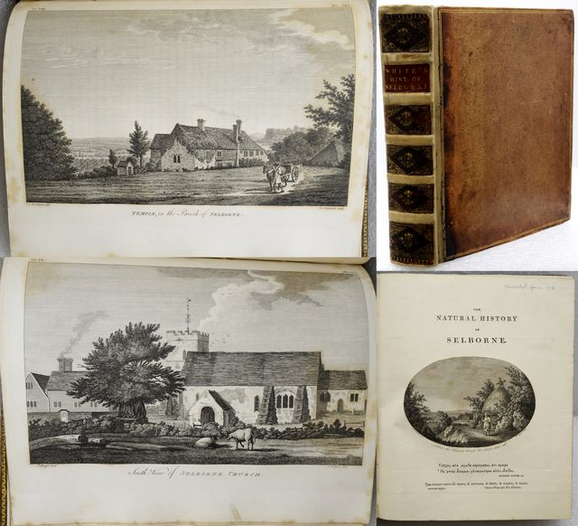 THE NATURAL HISTORY AND ANTIQUITIES OF SELBORNE,